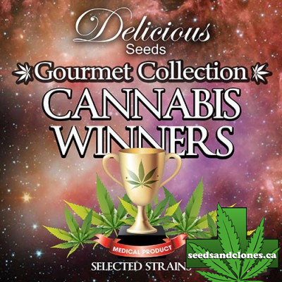 Gourmet Collection #1 Seeds
