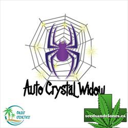 Auto Crystal Widow Seeds