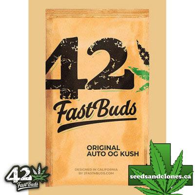 Original Auto OG Kush Seeds